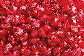 Background From Fresh Pomegranate Seeds