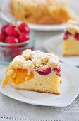 Apricot and Cherry Streusel Cake