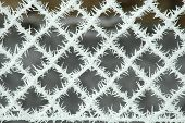Frosted Fence Net