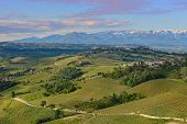 Villages on green hills with vineyards of Langhe in the morning at spring in Piedmont, Italy (view f