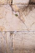 stock photo of israel israeli jew jewish  - The Wailing Wall - JPG