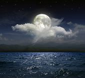 stock photo of moonlit  - Moonlit night over the sea - JPG