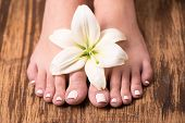 Female feet with spa pedicure