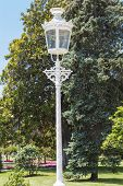 pic of opulence  - Ornate old gas street lamp in grounds of formal gardens - JPG