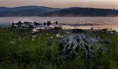 Sunrise At The Lake Lipno