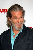 LOS ANGELES - AUG 1:  Jeff Bridges at the AARP Luncheon IHO Jeff Bridges at the Spago on August 1, 2