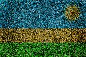 Rwanda Flag Color Grass Texture Background