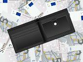Wallet On Five Euro Background