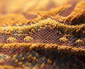 Orange oriental fabric