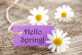 Purple Label With Text Hello Spring