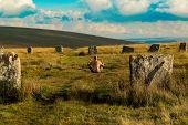 Pagan man at the Grey Wethers Stone Circles, Dartmoor