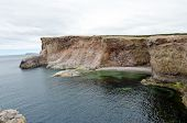 Cliff And Shore Of Newfoundland