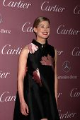 LOS ANGELES - JAN 3:  Rosamund Pike at the Palm Springs Film Festival Gala at a Convention Center on January 3, 2014 in Palm Springs, CA