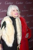 LOS ANGELES - JAN 3:  Carol Channing at the Palm Springs Film Festival Gala at a Convention Center on January 3, 2014 in Palm Springs, CA