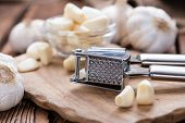 Garlic Press (with Fresh Garlic)