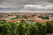Red Roofs, Prague Panorama