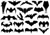Set of different bats