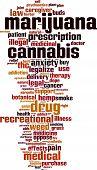 foto of gash  - Marijuana word cloud concept - JPG