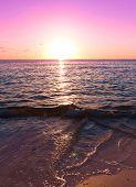 image of nightfall  - Skyline Nightfall Coast  - JPG