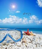 foto of sky diving  - diving mask and starfish under a flock of flamingos flying in the blue sky - JPG