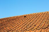 stock photo of roof tile  - Close - JPG