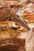 image of stall  - Fresh fish at a fishmonger stall in an indoor market - JPG