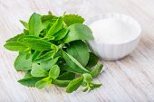 foto of sugar  - fresh stevia leaves and small bowl with sugar on a white wooden table - JPG