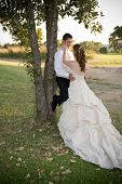 just married couple standing and kissing against a tree