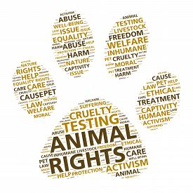 stock photo of animal cruelty  - Word cloud art in the shape of a paw print based on animal rights and humane treatment of pets - JPG