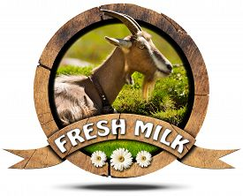 image of goat horns  - Wooden round icon or symbol with head of goat with horns text fresh milk and three daisy flowers - JPG
