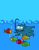 swimming kitten
