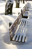 Benches Covered With Snow.