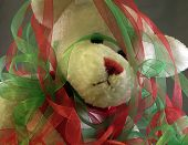 Overwhelmed Christmas Bear