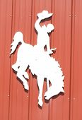 image of bronco  - silhouette of cowboy riding a horse trying to throw him - JPG