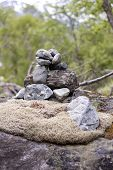 image of gneiss  - Rocks and moss in a green forest - JPG