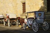 Horse Drawn Carriages In Guadalajara, Jalisco, Mexico