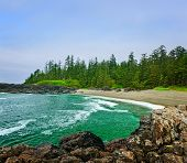 image of pacific rim  - Rocky shore of Pacific Rim National park Canada - JPG