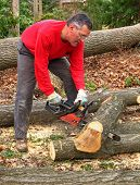 Man cutting log into sections with chainsaw