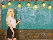 Woman With Nice Buttocks Teaching Mathematics. Sexy Teacher Concept. Lady Sexy Teacher In Short Skir poster