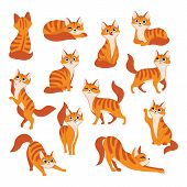 Red Cute Cat In Different Poses. Vector Cartoon Flat Illustration. Funny Playful Kitty Isolated On W poster