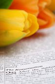 stock photo of risen  - Open Bible with selective focus on the text in Matthew 28 about Jesus - JPG