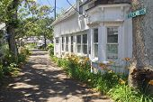image of martha  - Scenic homes and Summer flowers  along this road in Martha - JPG