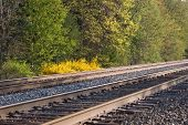 Scenic Railroad Tracks
