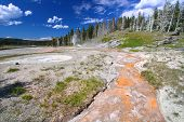 Grand Geyser Yellowstone National Park