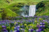 Skogafoss Waterfall In Iceland In Summer. poster