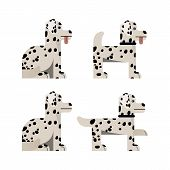 Set Of Flat Icons With Dalmatian. Pedigree Dog. Sitting And Standing. Vector Illustration. poster