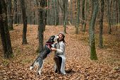 Animal Training. Pedigree Dog Concept. Best Friends. Girl Enjoy Walk With Husky Dog. Siberian Husky  poster