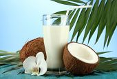 Coconuts with glass of milk,  on blue background