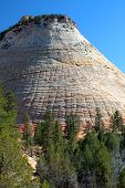 Checkerboard Mesa, Zion National Park, Usa..