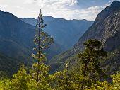 Trails thru Samaria gorge
